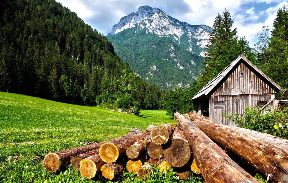Construction d'une petite maison bois en kit